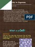 2013 Cells.docx