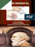 Sistem Urogenital