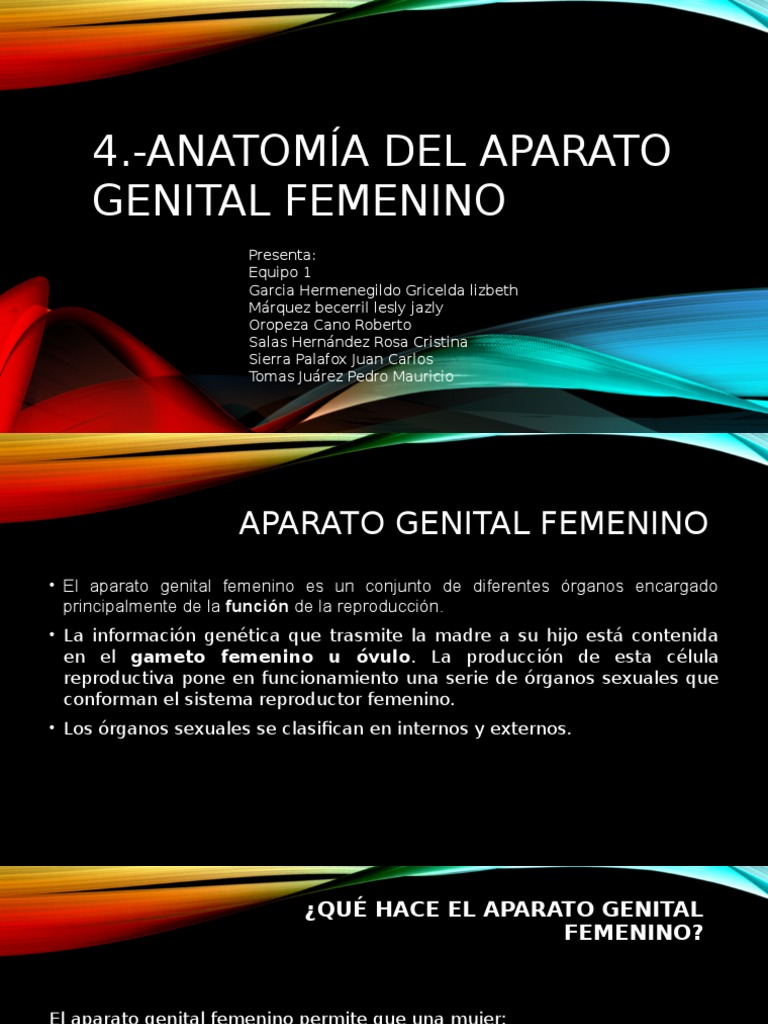 Aparato Reproductor Femenino 1 150226185834 Conversion Gate02