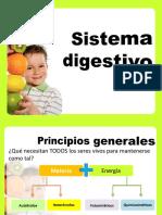 Sistema_Digestivo 4 Semestre