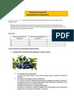 tarea agronegocios.docx