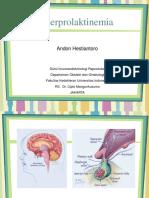 Hyperprolaktinemia2.ppt