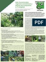 Sistemas Agroforestales Sucesionales