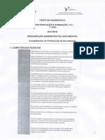 Competências do profissional de secretariado.pdf