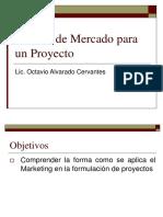 Estudio de Mercado en Proyectos
