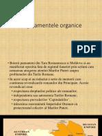 Proiect IDR Regulamentele Organice