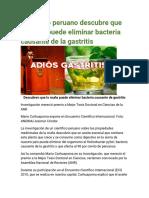 Científico Peruano Descubre Que La Muña Puede Eliminar Bacteria Causante de La Gastritis