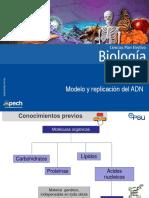 Clase 1 Modelo y Replicación Del ADN 2017