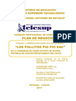 PROYECTO-PAVIPOLLOS-COMPLETOULTIMO.docx