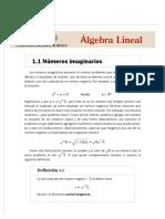 1.1 Números imaginarios _ 1.pdf