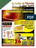 Revista Mieles Febrero 2015