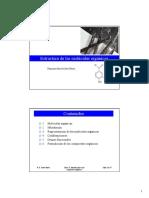 Ch11 [Compatibility Mode].pdf
