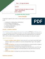 323784234 Resumen Estudios Sociales Zapandi 2016