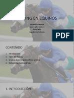 Doping en Equinos