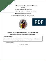 Perfil de Conservacion y Restauracion