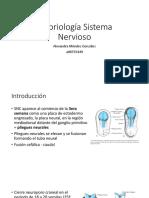 Embriología Sistema Nervioso