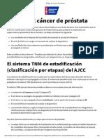 Etapas Del Cáncer de Próstata