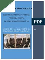 efectos de la luz sobre las plantas informe de Fisiologia unaj