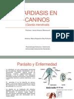 Giardiasis en Caninos