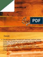 askep hemofilia 03