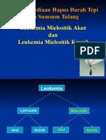 Asistensi AML Dan LGK