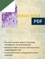 10.Nervous Tissue