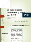 Marco Legal Ambiental_PPM-PMA