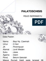 Palatoschisis