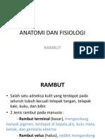 Anatomi Dan Fisiologi Rambut-1