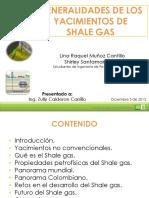 Generalidades Del Shale Gas