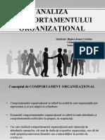 Analiza Comportamentului Organizational