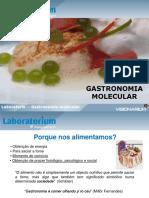 Lab Gastronomia Molecular 2016