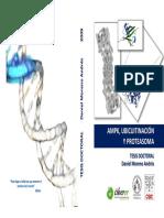 AMPK, Ubicuitinación y Proteasima