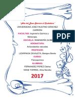 ANTIOXIDANTES-ORGANICOS