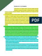 revision-bibliografica-via-lesiones.docx