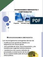 MICROORANISMOS EMERGENTES