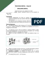 UAP - AMALGAMAS DENTALES- Clase 06 (1).doc
