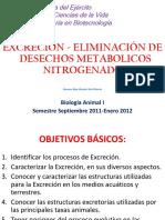 Excreción-eliminación de Productos Metabolicos Nitrogenados