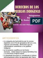 2.- Derechos Indigena y Educacion