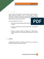 Puentes Imprimir Informe 1