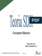 280455464-Teoria-SDH-GBG-pdf.pdf