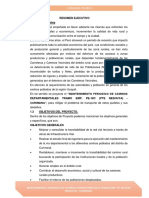 Resumen Ejecutivo- Volumen i