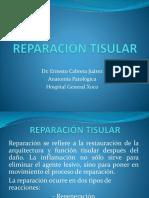 05 REPARACIÓN TISULAR