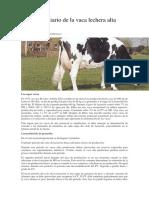 El Manejo Diario de La Vaca Lechera Alta Productora