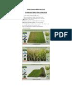 GFDHBHBGBWEBGAWEFVGEWGEGERGERGEGERGEFicha Tecnica Grass Sintetico