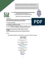 Guia de Elaboracion Protocolo