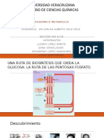Bioquimica via de Pentosas Fosfato