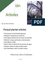 Plantacion de Arboles