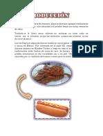 Luz Hot Dog de Ternera