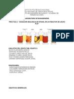 Bi - Practica 2 - Oxidacion Biologica de Et-oh en Un Reactor de Lecho Fijo